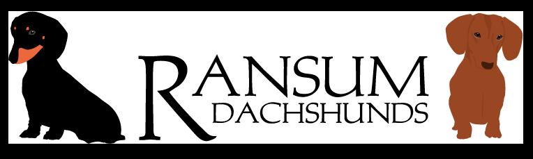 ransumwebheader