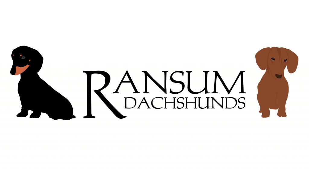 AnnaRansumFront-01