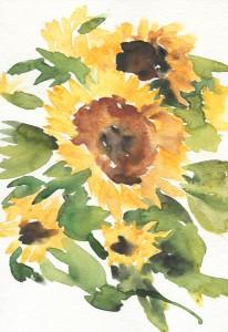4websunflowers