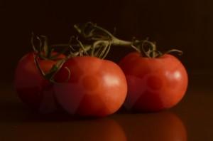 tomatoFear1